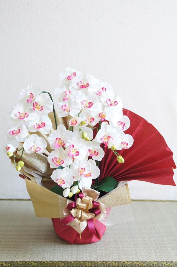 奶油白/胡蝶蘭鉢7書擋/陶器鉢/(人造花、人造賞葉植物)