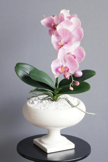 ピンク胡蝶蘭 ラウンドポット(造花)