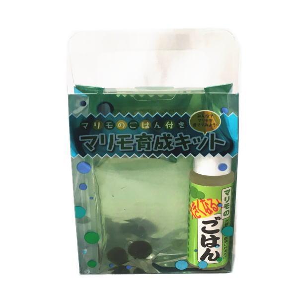 ご自宅で簡単育成まりもちゃん ミニミニアクアリウムの誕生です。 マリモのごはん付き マリモ育成キット(養殖マリモ2個) 青 【水草 植物 アクアリウム 北海道 雑貨 お土産 おみやげ 小物 セット 販売 説明書 グッズ アイテム 毬藻 阿寒湖みやげ】