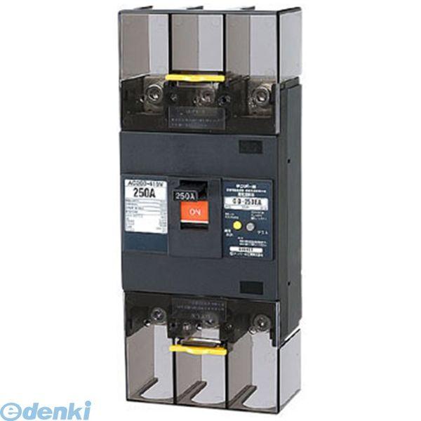【キャンセル不可商品】テンパール工業 GB-253EA 250A W2 漏電遮断器 GB253EA250AW2