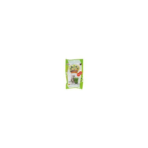 [4932804720159] 【24個入】 2907 NyanTaste ねこ草ランド 栽培セット