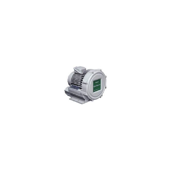 昭和電機 U2V-20T 直送 代引不可・他メーカー同梱不可 ガストブロア U2Vシリーズ 0.2kW U2V20T 【送料無料】【キャンセル不可】