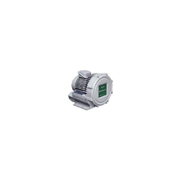 昭和電機 U2V-40S 直送 代引不可・他メーカー同梱不可 ガストブロア U2Vシリーズ 0.4kW U2V40S 【送料無料】【キャンセル不可】