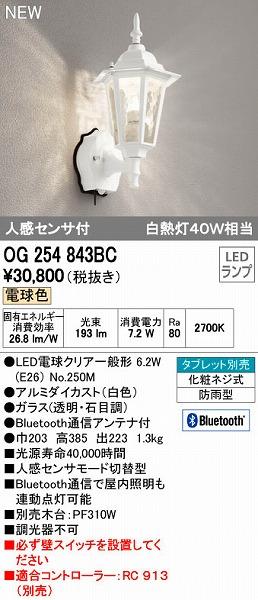オーデリック ODELIC OG254843BC LEDポーチライト【送料無料】