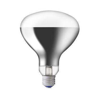 【送料無料】岩崎電気 屋外投光用アイランプ 220V 200W形 [10個セット] RF220V180WH-10SET