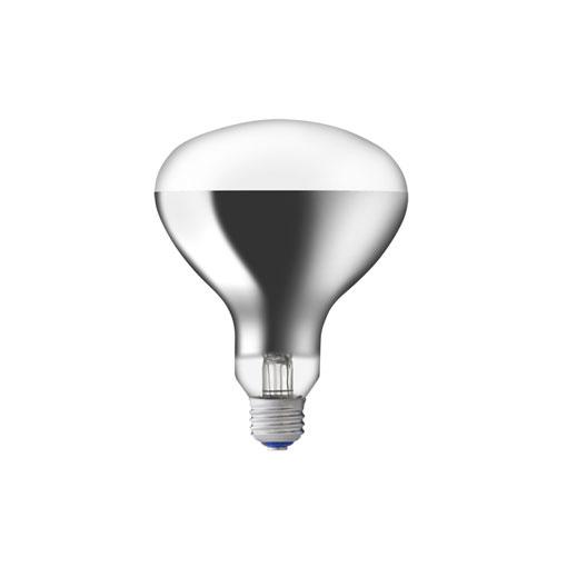 【送料無料】岩崎電気 屋外投光用アイランプ 220V 100W形 集光形 [10個セット] RS220V90WH-10SET
