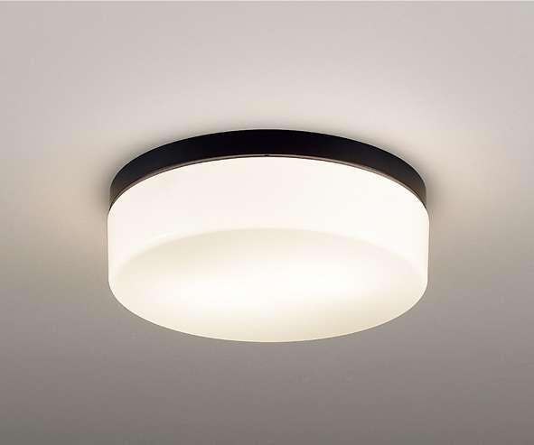 ENDO 遠藤照明 ERG5489B アウトドアシーリングライト