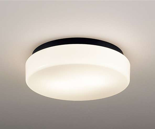 ENDO 遠藤照明 ERG5490B アウトドアシーリングライト
