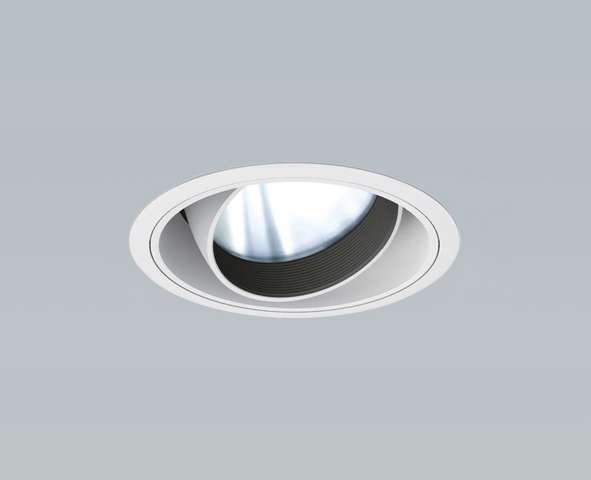 遠藤照明 ENDO Φ125 ERD5639WZユニバーサルダウンライト