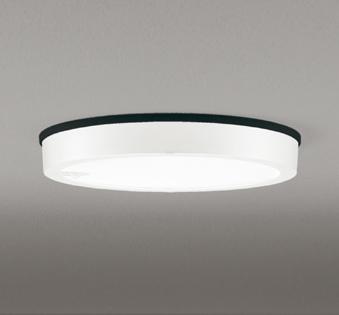 OG254813 人感センサ付軒下シーリング (FCL30Wクラス) LED(昼白色) オーデリック 照明器具