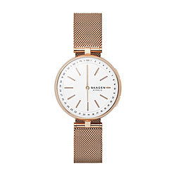 【送料無料】SKAGEN SKAGEN CONNECTED SKT1404