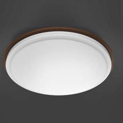 TOSHIBA(東芝) リモコン付LEDシーリングライト (~12畳) 調光調色 NLEH12005A-LC [12畳 /リモコン付き] NLEH12005ALC