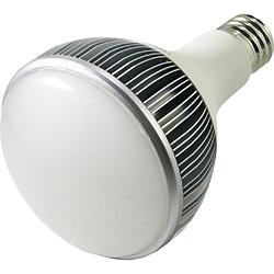 鯛勝産業 タイカツ LED投光器 替ランプ 口金E39 タイカツ TK-LED450N