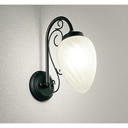 オーデリック 玄関照明 OG254309LC マットブラック [電球色 /LED /防雨型 /要電気工事] OG254309LC