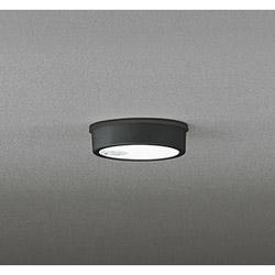 オーデリック OG254535 玄関照明 ブラック [昼白色 /LED /防雨型 /要電気工事] OG254535