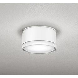 オーデリック 玄関照明 OG254598ND オフホワイト [昼白色 /LED /防雨型 /要電気工事] OG254598ND