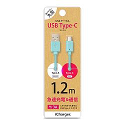 新品 送料無料 PGA USB 贈答品 Type-C Type-A コネクタ USBケーブル PG-CUC12M13 ブルー iCharger 1.2m PGCUC12M13