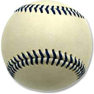 納期: 取寄品 キャンセル不可 出荷:約7-11日 土日祝除く プロマーク WB-2265 ホワイト 高価値 オンラインショッピング 160g ウェイトトレーナーボール Promark