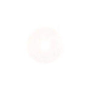 【スリーエム 3M】ホワイトスーパーポリッシュパッド 白 455×82mm 5枚入り WHI 455×82