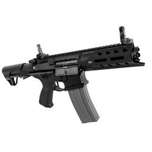 【G&G】ARP 556 EGC-ARP-556-BNB-NCS 18歳以上