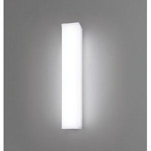 【パナソニック Panasonic】LED20形ウォール防雨形昼白色定格出力 NNFW21800CLE9