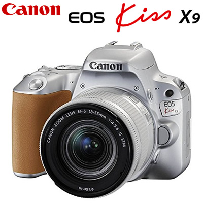 キヤノン デジタル一眼レフカメラ EOS Kiss X9 EF-S18-55 IS STM レンズキット シルバー EOSKISSX9LK-SL CANON【送料無料】【KK9N0D18P】