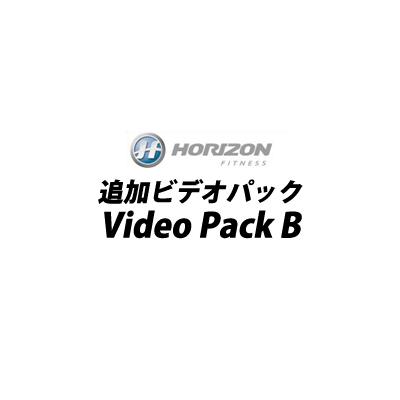 【最大1500円OFFクーポン配布中!~11/22(木)9:59迄】ジョンソン HORIZON VIDEO PACK B ビデオパック VideoPack-B【送料無料】【KK9N0D18P】