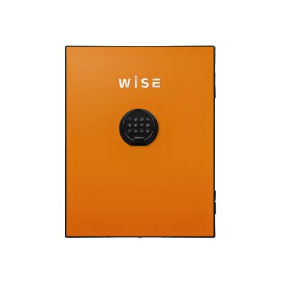 ディプロマット デジタルテンキー式 デザイン 金庫 (WiSE) 用フェイスパネル 内容量5Kg WS500FPO オレンジ【送料無料】【KK9N0D18P】