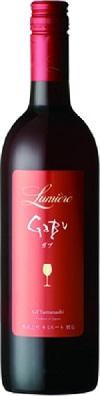 日本ワイン山梨県 ルミエールGABU 赤 辛口 750ml 通販 激安◆ W410お届けまで25日ほどかかります 新品未使用正規品