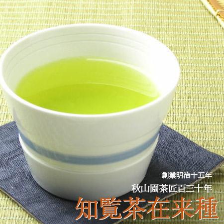 2本セット 昔のお茶はうまかった、そう感じていたらこのお茶です 知覧茶 在来種 80g×2本 緑茶 煎茶 (08) 鹿児島茶 茶葉 お茶