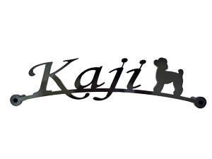 表札 アイアン 送料無料 鉄製 かわいい おしゃれ 犬 スペーサータイプ トイプードル1のワンポイントが入ったサインプレート 戸建 新築 お店ロゴ お祝い ギフト に最適!