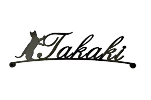 表札 アイアン 送料無料 鉄製 かわいい おしゃれ 動物 ねこ マグネットタイプ 立った猫がアクセント アイアン表札 戸建 新築 お店ロゴ お祝い ギフト に最適!