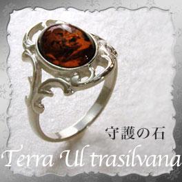 【天然琥珀】指輪 シルバー リング メンズアクセサリー ギフト 贈り物に 【tr1030深い赤い こはく ・守護の石】 ジュエリー【送料無料】