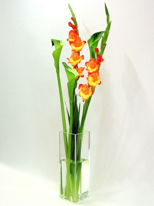 ベーシック/クリア色四角柱F型(高さ498mm×横幅・奥行168mm)(高さ498mm×横幅・奥行156mm)(高さ498mm×横幅・奥行144mm)の3本セットアクリル・フラワーベース・花器・花瓶
