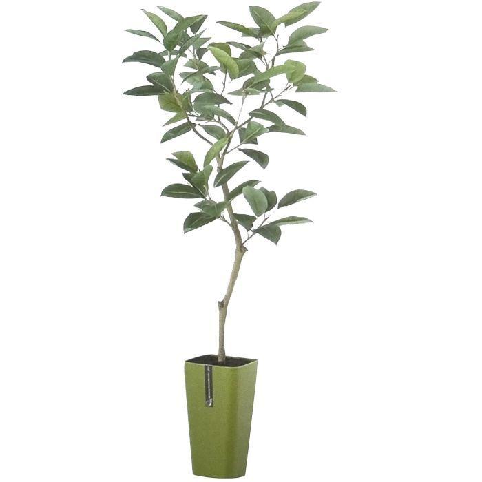 お部屋やお店のディスプレイに最適 造花 人工観葉植物 デコラゴム サンド仕上げ 高:150cm インテリア グリーン 2020新作 BV91609 横:70cm × 出群 ディスプレイ