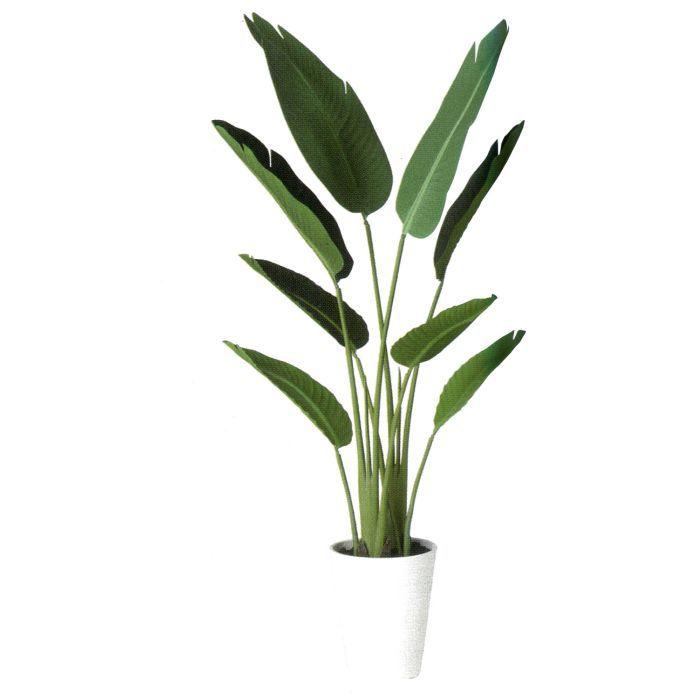 年中無休 お部屋やお店のディスプレイに最適 造花 人工観葉植物 オーガスタ 安値 バーク付き 高:120cm BV91879 × インテリア グリーン ディスプレイ 横:50cm