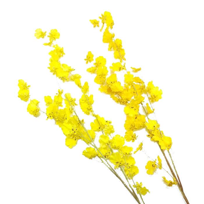 上品 春夏秋冬季節の造花を単品販売 ディスプレイ アレンジや花束の材料に おすすめ特集 造花 6192 春 ロングオンシジューム オンシジウム