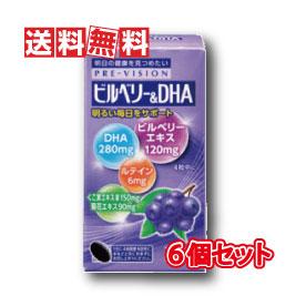 【送料無料】湧永製薬 プレビジョン ビルベリー&DHA 120粒 6箱セット(ディーエイチエー 120錠)