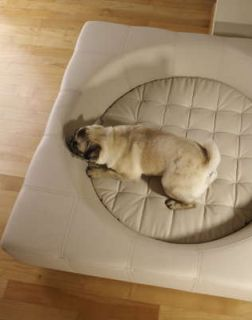 【smtb-s】【送料無料】ドイツ発最高級小型犬用ベッド【Cube・イミテーションレザー】