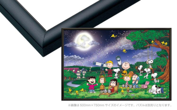 あす楽 テレビで話題 パネル フレーム EPP-66-307 パネルマックス ブラック 5-B 38×53cm 大放出セール No.7 ラッピング不可