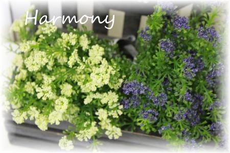 期間限定特価品 ■ナチュラルな草花のピック 購入 セブンハートリーフピックWH アリスの時間