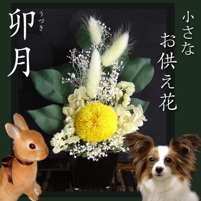 【御供え 花】 【お仏壇花】愛犬、愛猫、ペットの御供えにミニ仏花【卯月】伝統的な黄菊の御供え花■アレンジメント。仏花[S]【楽ギフ_のし】送料無料