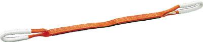 TRUSCO ベルトスリング JIS3等級 両端アイ形 35mmX10.0m【物流保管用品】【吊りクランプ・吊りベルト】【ベルトスリング】