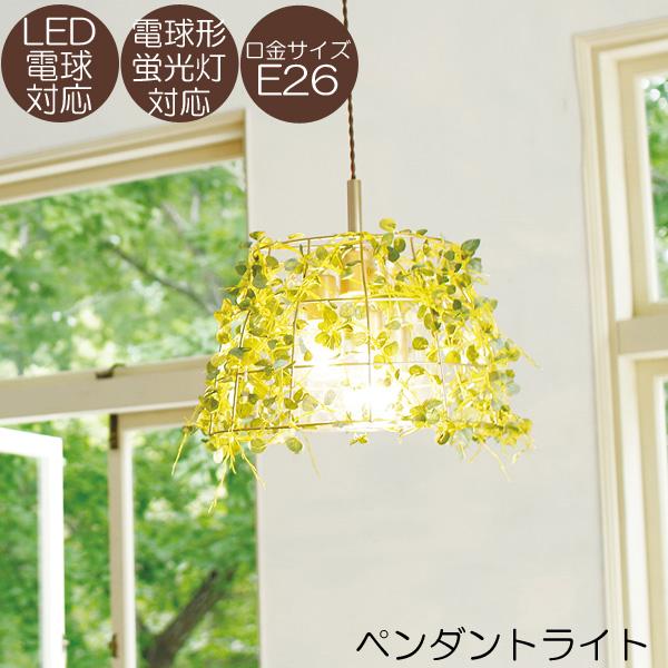 ペンダントライト Fittonia 3灯 LED電球対応 電球形蛍光灯対応 照明器具 【BOTANIC(ボタニック)】【送料無料】