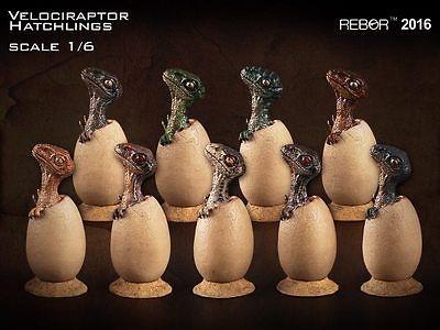 激安の 1/6 REBOR Velociraptor Hatchlings ヴェロキラプトル ベビー, ヘルシー生活館 d51cc9ae