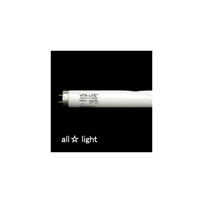 ☆★ 輸入フルスペクトルランプ バイタライト ネジレ型 蛍光灯 ラピッド・グロー兼用 40W 5500K Ra94 【6本入り】 3826EXLS(1308)