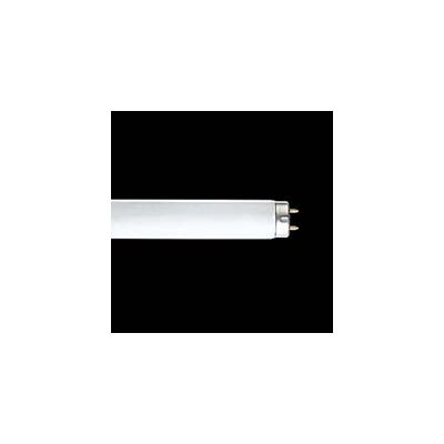 ☆東芝 色評価用蛍光ランプ 高周波点灯専用形 32形 昼白色 【25本入り】 FHF32NEDL