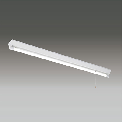 ☆東芝 LEDベースライト 逆富士非常用照明器具 長時間形 Sタイプ LDL40×1灯用 非常時定格光束3800lm×45% 非常時60分間点灯 昼白色 LEDランプ付 LEDTS41306LNLS9 ※受注生産品
