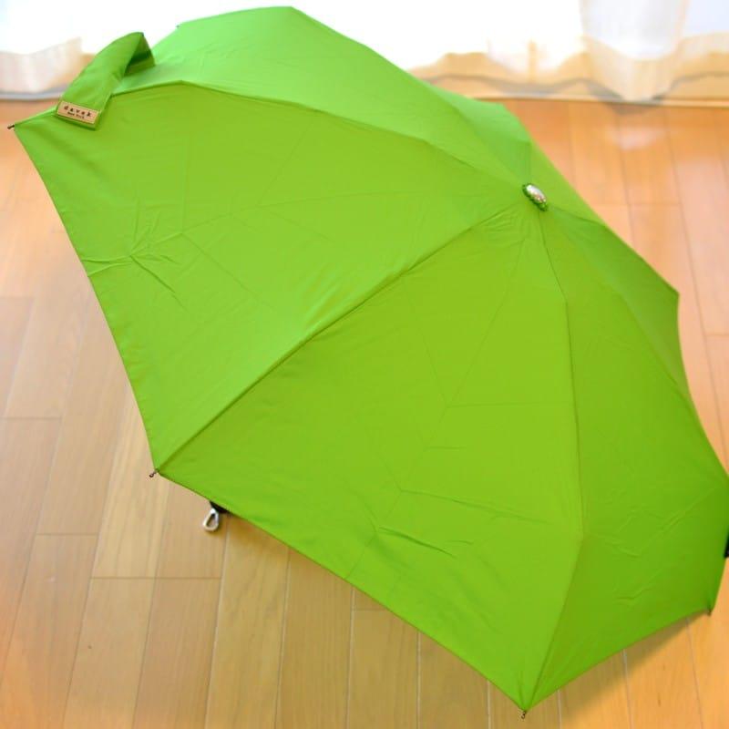 折りたたみ傘 ダべック トラベラー 自動開閉式 雨傘 高級 グリーン 緑 キウイ THE DAVEK TRAVELER KIWI GREEN Umbrella