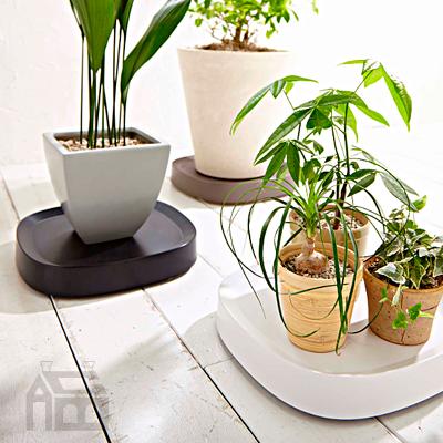 クーポン対象商品 tidy プランタブル 植木鉢トレー plantable 玄関 庭 ガーデン バルコニー 1着でも送料無料 ガーデニング 新色追加